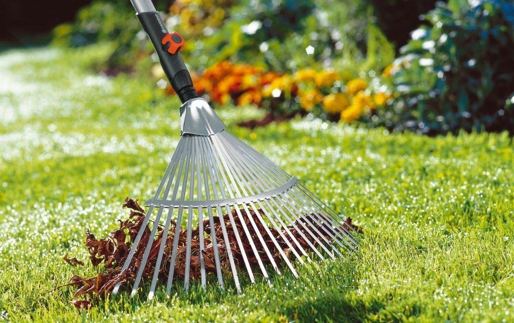 Искусственный газон: 7 советов по уходу