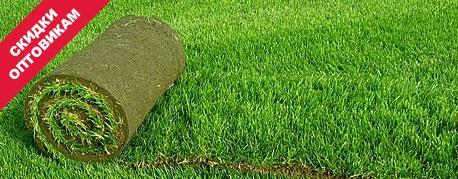 рулонный газон заказать, опт, скидки