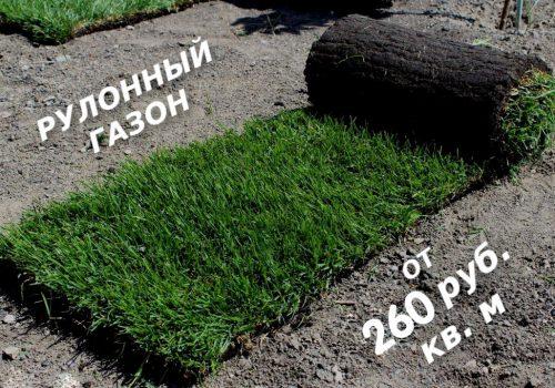 Рулонный газон от 200 руб.